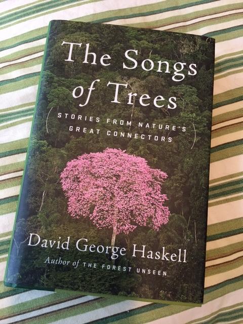 Tree-Part Harmony
